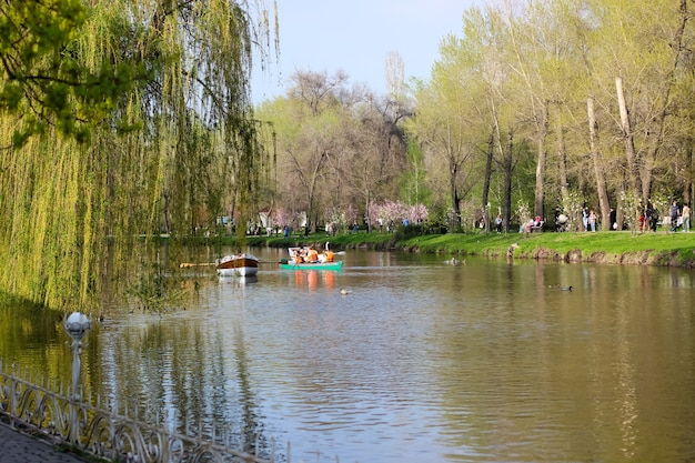 봄에 공원. 물에 대한 의지. 물에 반영된 나무