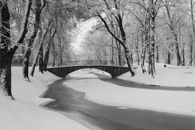 Парк зимой, деревья засыпаны снегом, речной ледяной мост