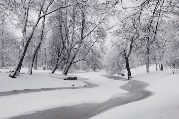 Парк зимой, деревья покрытые снегом, речной лед