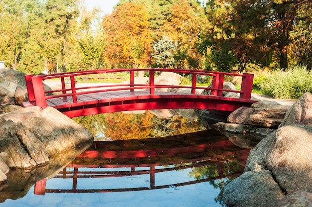 Park in japanese style with red bridge
