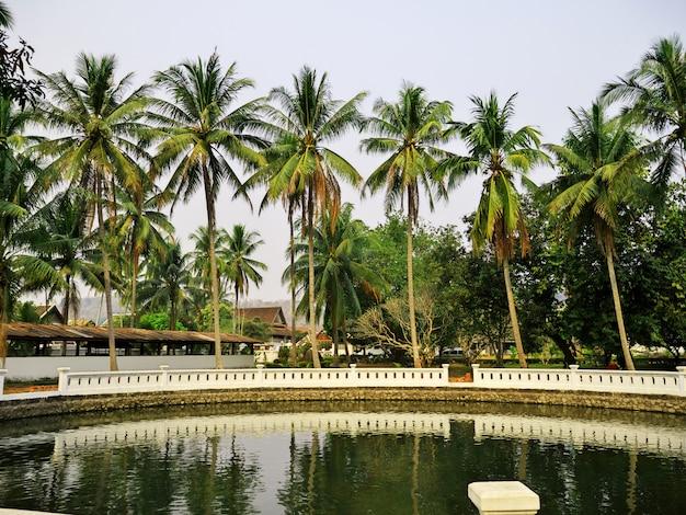 The park in luang prabang, laos