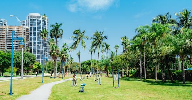Park trees people city coconut grove florida
