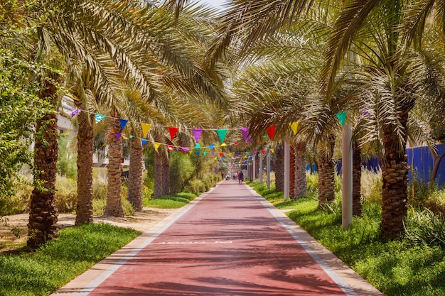 Park for walking and sports in palm jumeirah in dubai