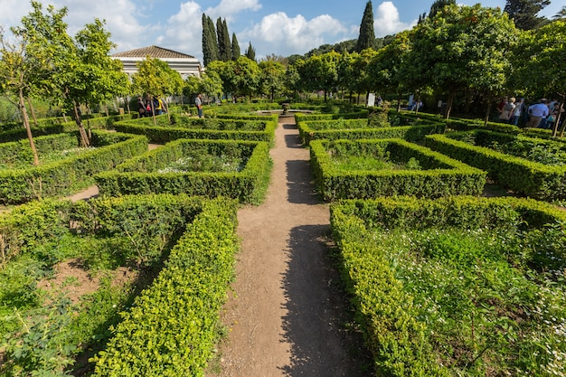 Park with square hedges