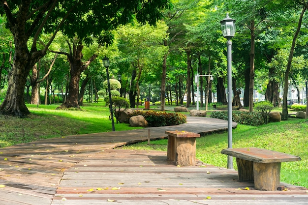 Park with a wooden pathway and benches