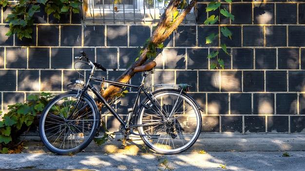 建物の壁と木のそばに駐車した自転車
