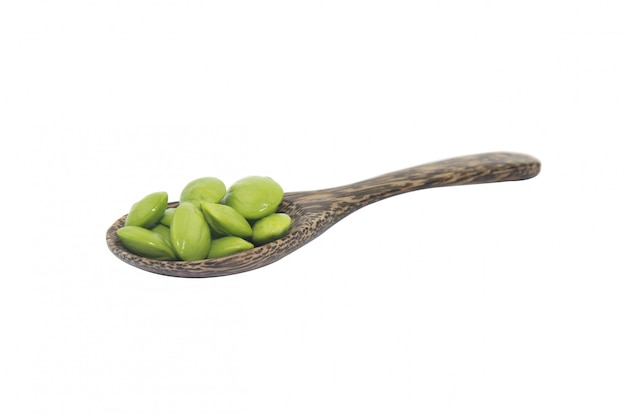 Parkia speciosaの種子や白で隔離される苦い豆の木のスプーン