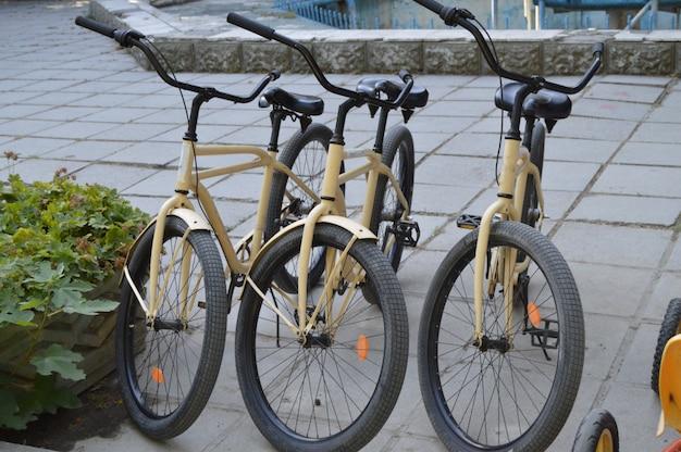都市公園内の駐車場と自転車のレンタル