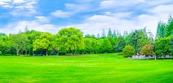 公園、山、反射、山、装飾、庭