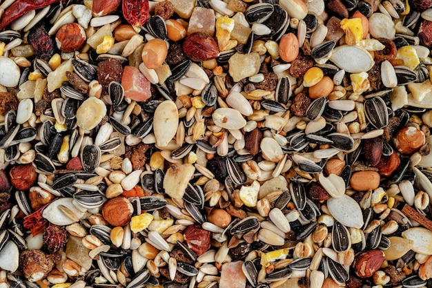 Parrot fodder of dried fruits, nuts and seed mix. healthy eating for pets.
