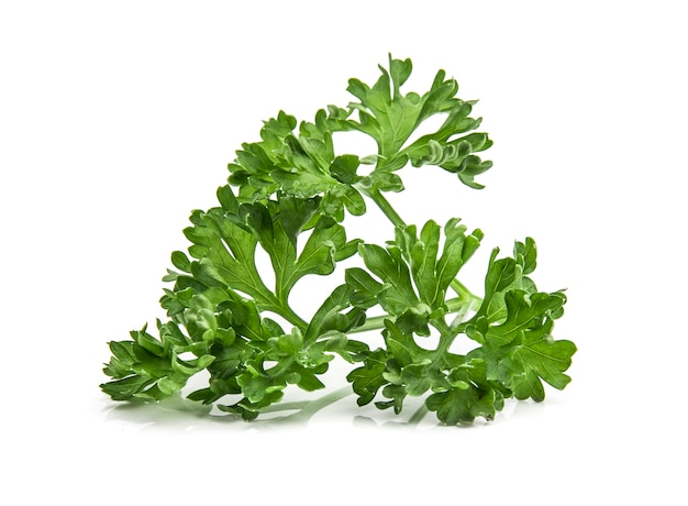 Parsley isolated on white background
