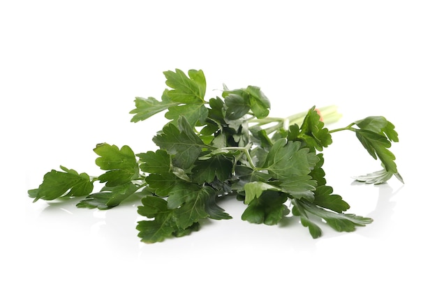 Parsley leaves on a white surface