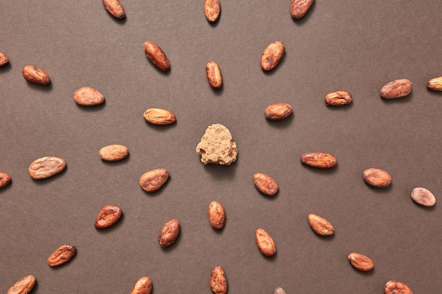 Part of fresh natural cocoa mass in the middle of food