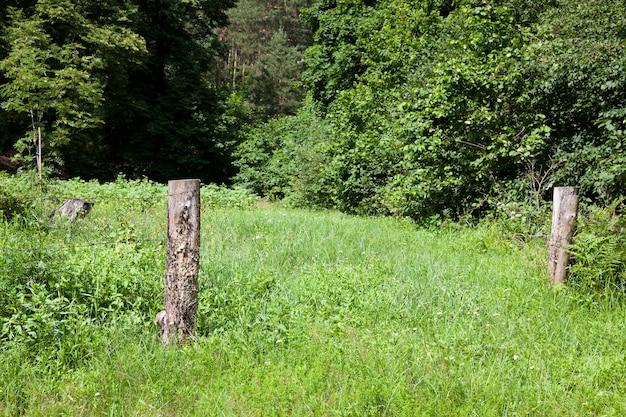 철조망이 있는 오래된 나무 울타리 울타리의 일부, 철조망이 뻗어 있는 나무 기둥