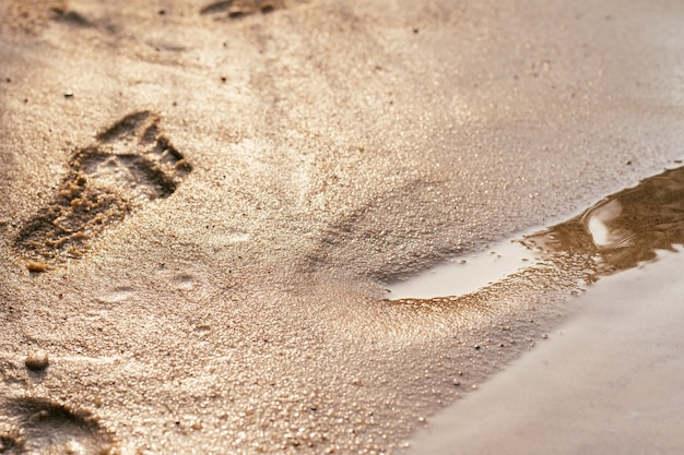 Partially blurred background image of baby footprints on coast. wet sand prints, near water's edge in sun