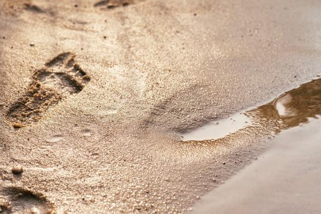 海岸の赤ちゃんの足跡の部分的にぼやけた背景画像。太陽の下で水の端の近くにある湿った砂のプリント