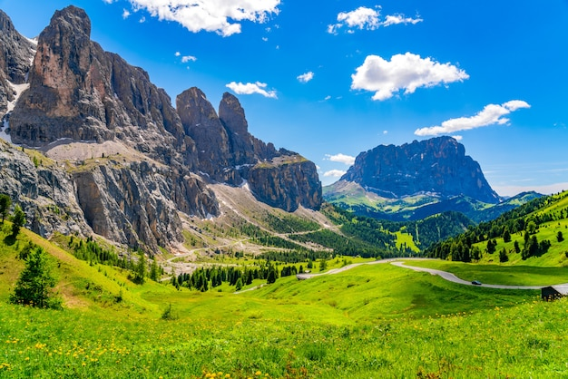 花畑と南チロル、イタリアのサッソルンゴ山のあるガーデナpassのドロミテの風景
