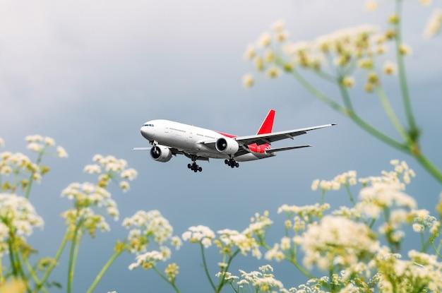 Пассажирский коммерческий самолет пролетает над цветочными полями в аэропорту.