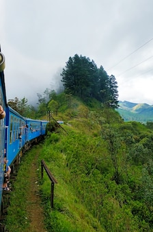 Passenger train with tourists rides through the green fields and the jungle of sri lanka