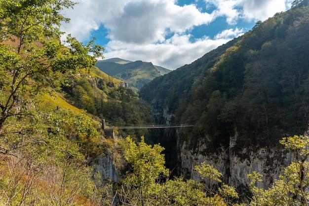 Passerelle de holtzarte、ラロー。スペインのナバラとピレネーアトランティックの北にあるイラティの森またはジャングルで
