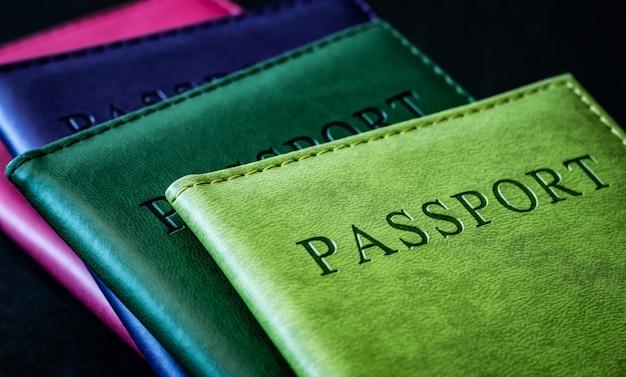 가죽 커버에 여권을 닫습니다.