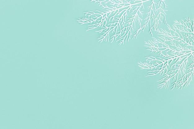 Пастельный фон с белыми кораллами на бирюзовой бумаге