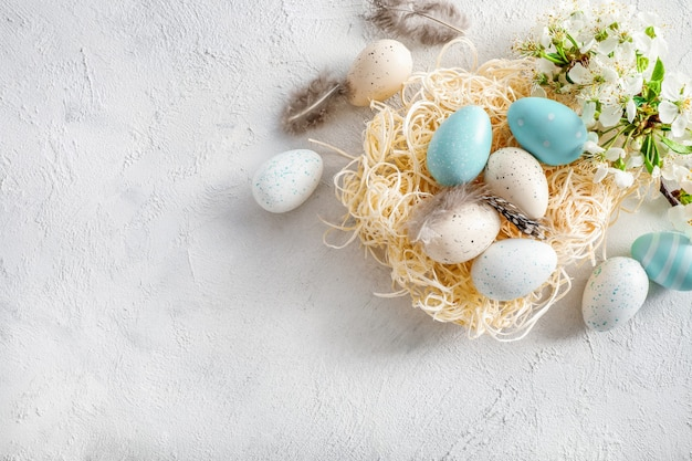 Pastel colored easter eggs in nest and spring blooming branches on white