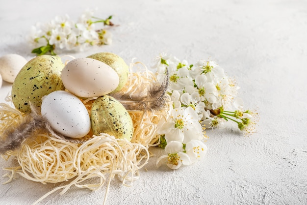Pastel colored easter eggs in nest and spring blooming branches on white.