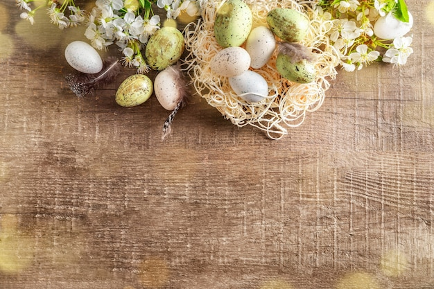 Pastel colored easter eggs in nest and spring blooming branches on wooden