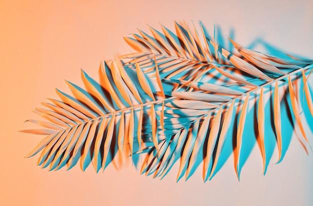 パステルカラーのシュロの葉