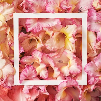 パステルグラジオラスの花が塗りつぶされ、レトロなスタイルで挨拶メッセージを挨拶するための白いフレーム