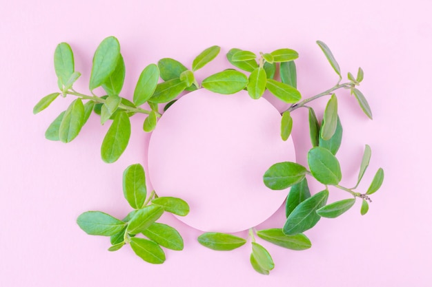 Pastel pink background with plants.