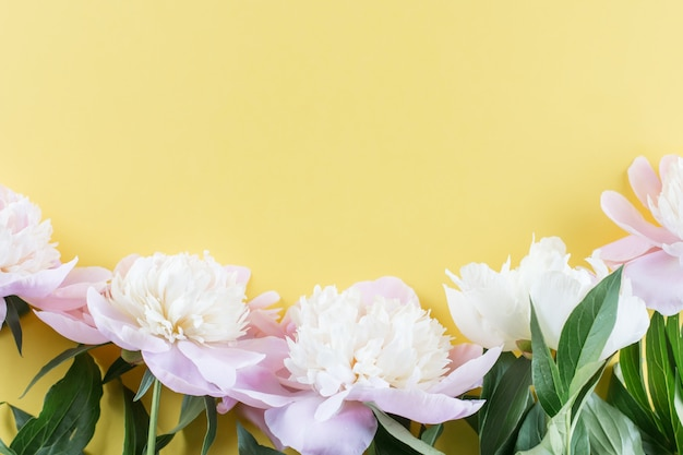 Pastel pink peony flowers bouquet on yellow background. minimal floral flatlay concept.