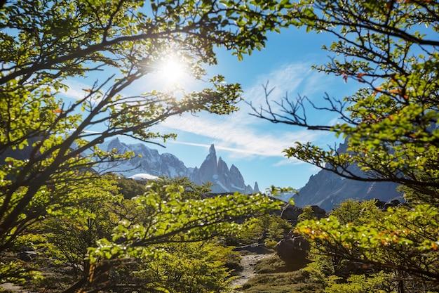 南部のパタゴニアの風景