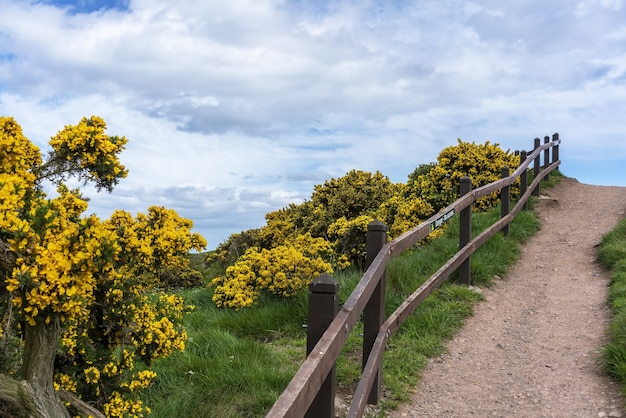 ダノター城周辺の小道、スコットランドの北東海岸の岩だらけの岬にある廃墟の中世の要塞