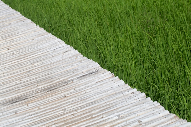 Path from bamboo over green field.