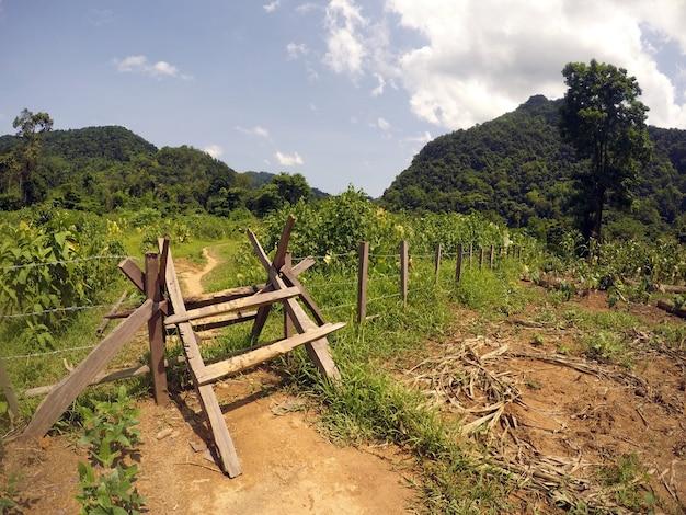 The path to hang en cave in phong, nha, vietnam