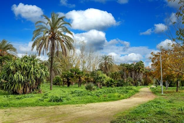 아름다운 공원의 경로. 휴식을위한 아름다운 날