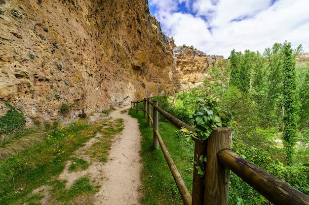 花、緑の草、地平線につながる木製の柵のある春の森の小道。 hocesduratãƒâ³n、セプルベダ、セゴビア。