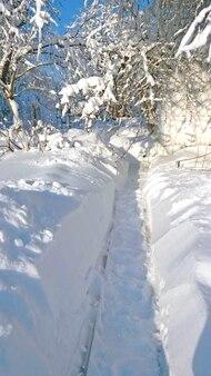 높은 snowdrifts에서 만든 경로