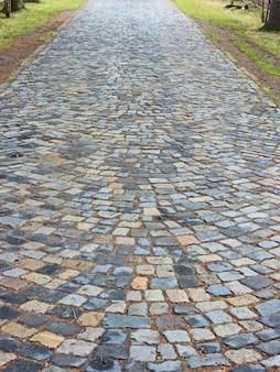Каменная дорожка в тихом саду