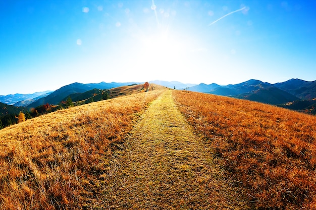 Path in mountains and sunlight