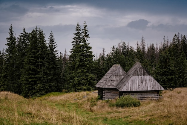 Tatry 산맥, 폴란드의 gasienicowa 계곡을 통과하는 경로