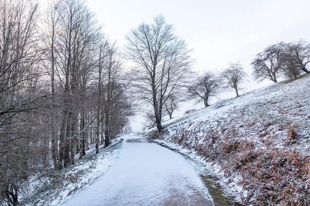 ギプスコアのアイスコリ山までの道。冬の雪による雪景色。