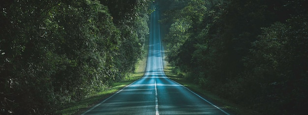 秋の森の自然な方法の概念を通る道