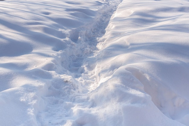 The path in the white snow. the play of light and shadow.