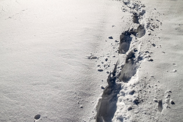 Path with footprints in snow in winter