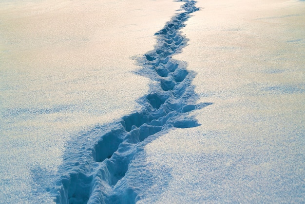 Path with footprints in snow in winter.