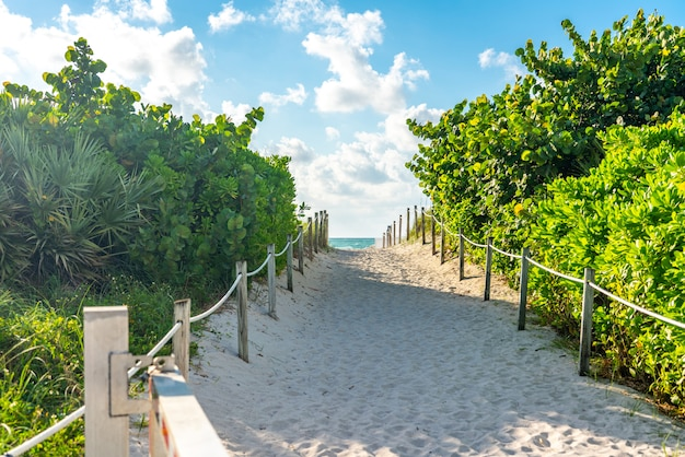 Pathway to the beach in miami florida