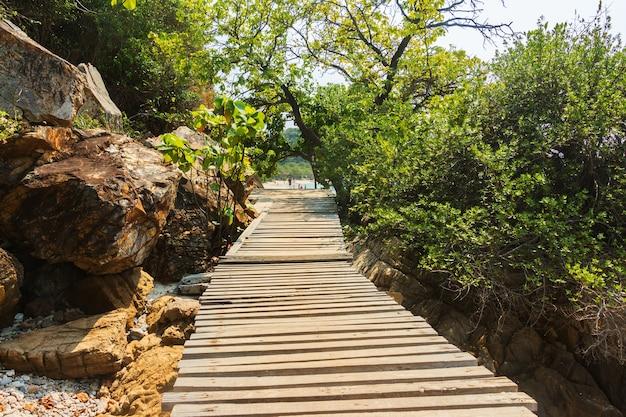 Путь в саду.